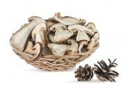 Сушеные белые грибы в интернет магазине «Медовый Спас»